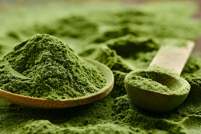 chlorella alga fogyás 3 nap alatt 10 kg fogyás