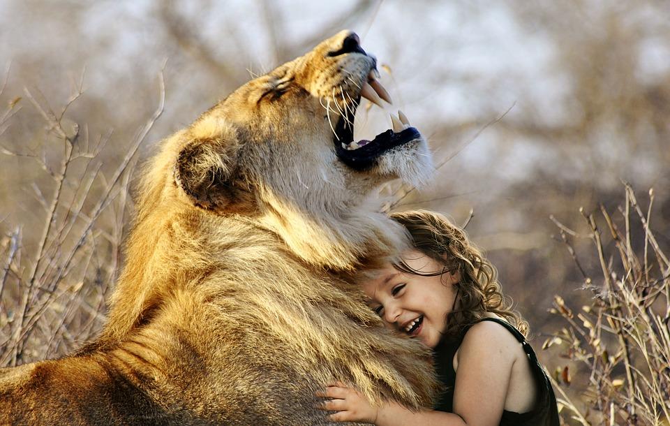 oroszlán fogyás fogyni mozgás nélkül