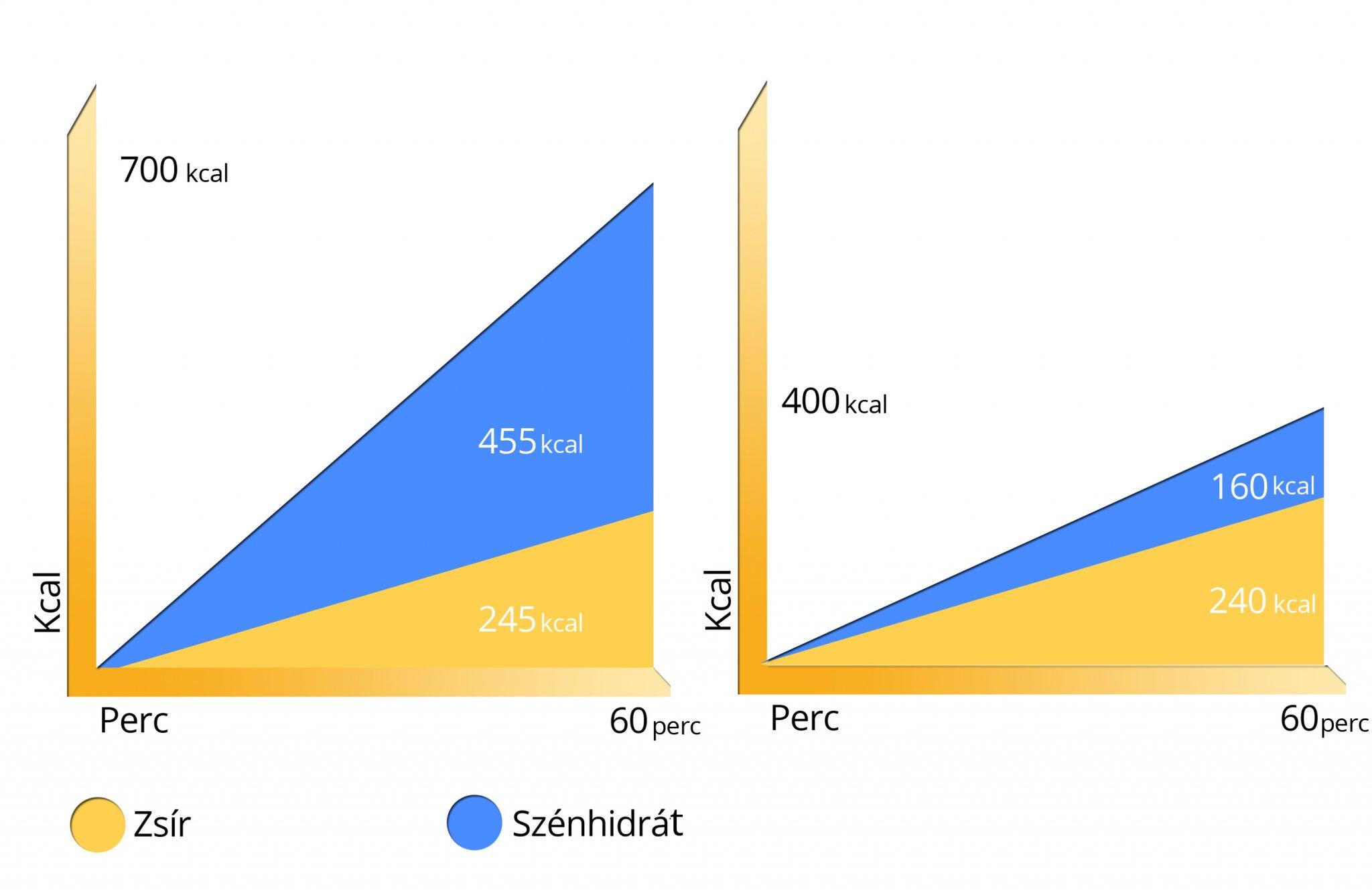 metabolikus fogyás valdosta fogyás vs inch veszteség