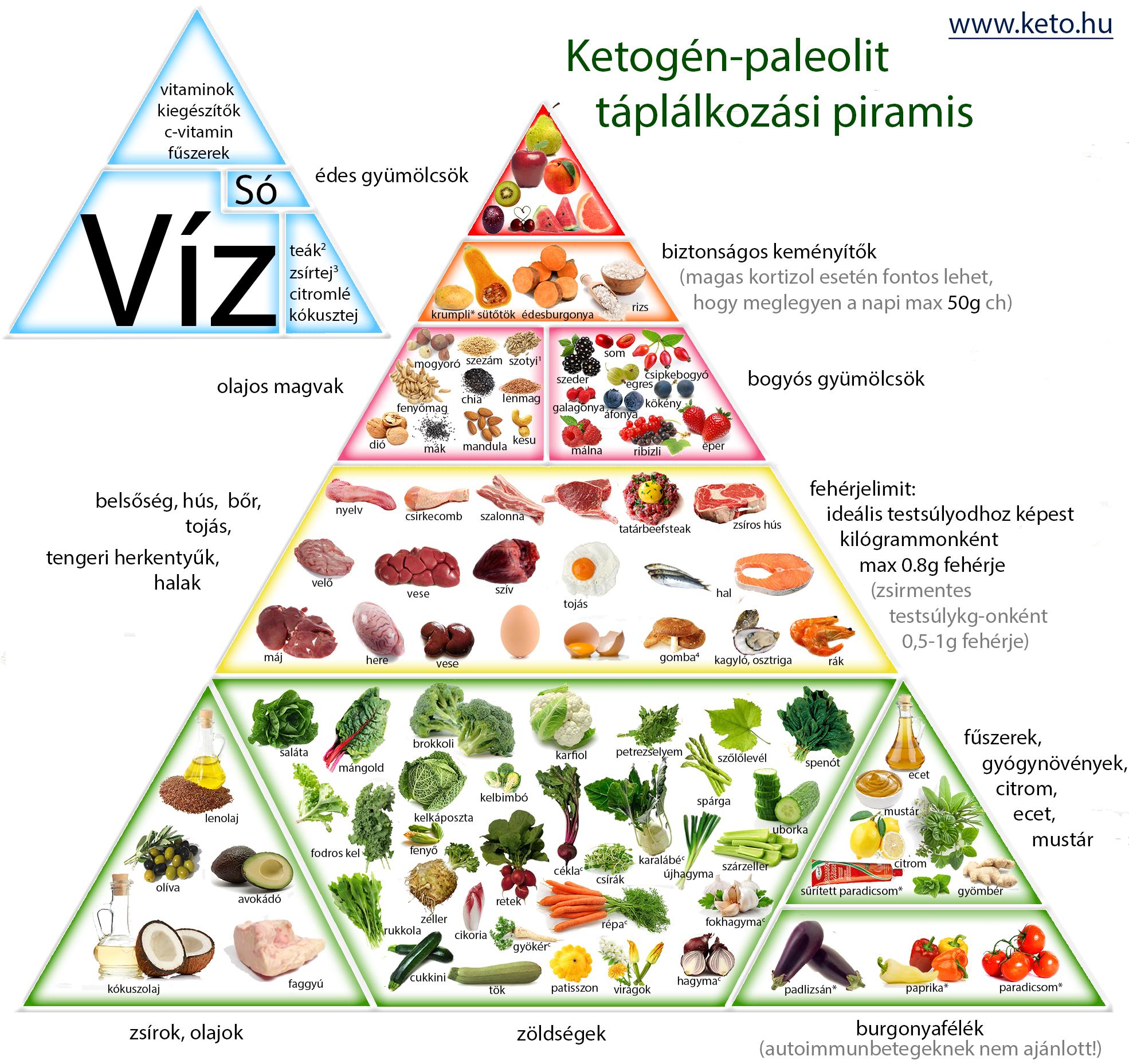 paleolit dieta hogyan lehet lefogyni a gyerekét