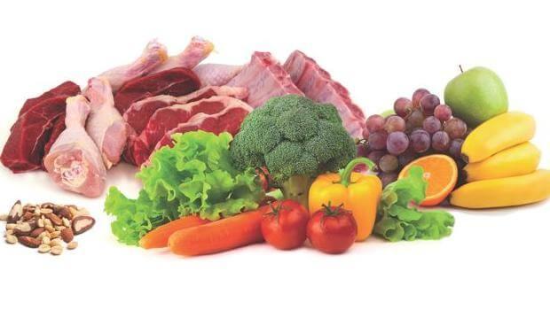 paleolit dieta házi praktikák fogyásra