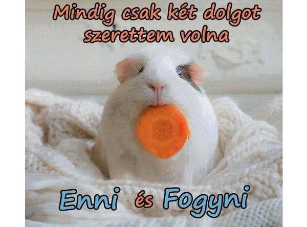 fogyni enni sokat)