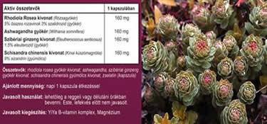 Vércsoport szerinti táplálkozás könyv - 10 napos disszociált étrend receptkönyve