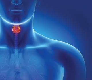 könnyű és egészséges fogyás módja hogyan veszítik a felső hátsó zsírt