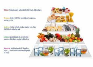 metabolikus étkezés referenciabevitel a fogyáshoz